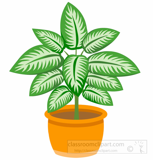 Plant clipart #18, Download drawings