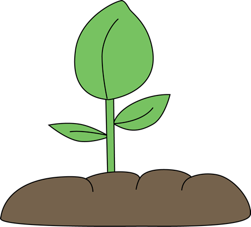Plant clipart #15, Download drawings