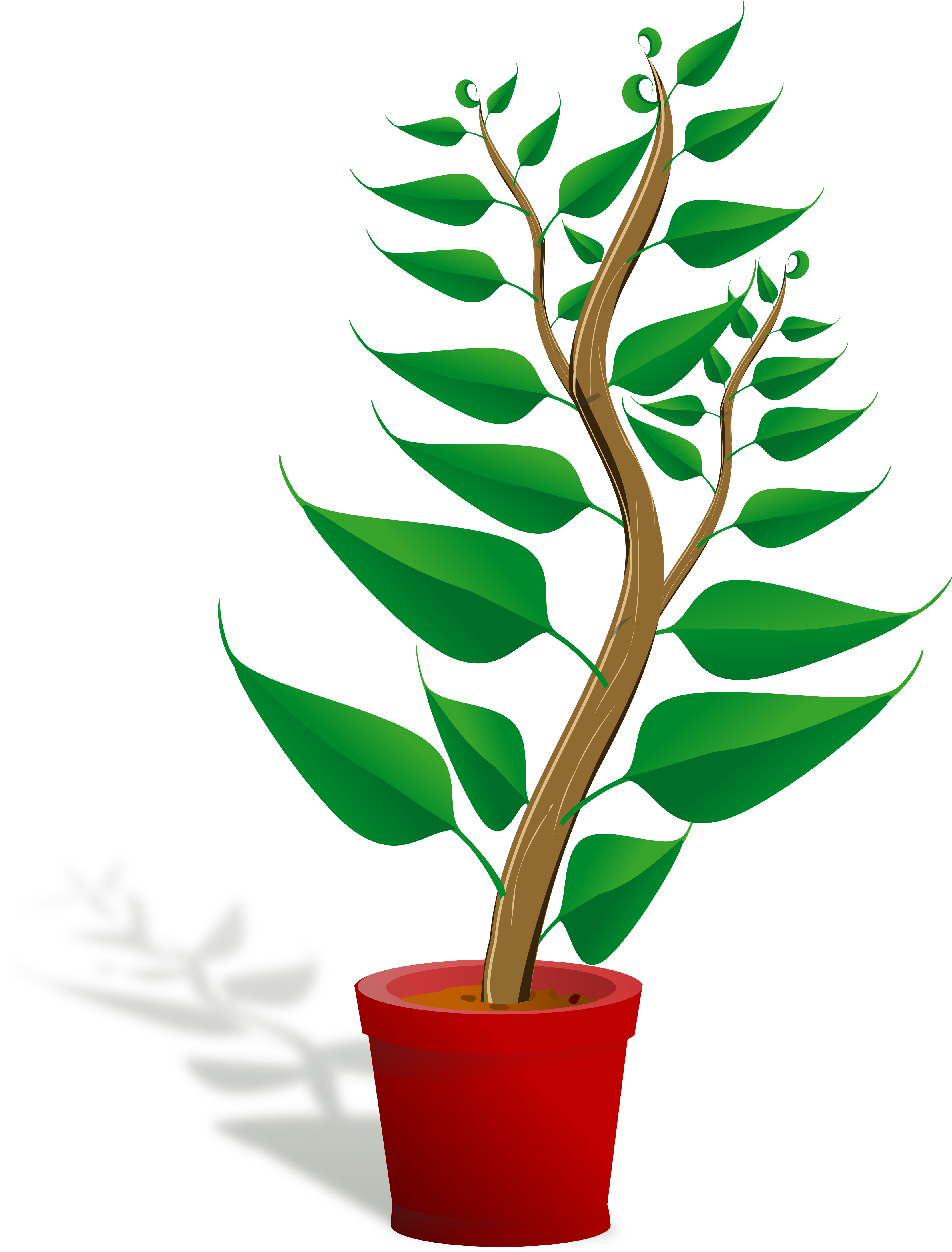 Plant clipart #7, Download drawings
