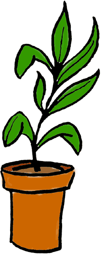 Plant clipart #20, Download drawings