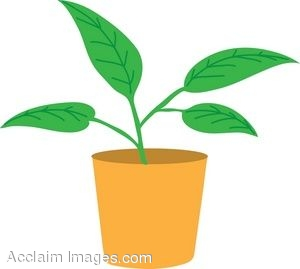 Plant clipart #4, Download drawings