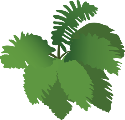 Fern svg #1, Download drawings