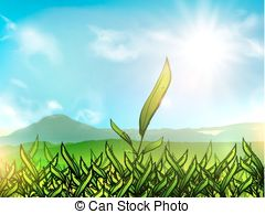 Plantation clipart #16, Download drawings