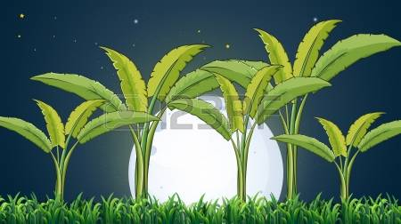 Plantation clipart #7, Download drawings
