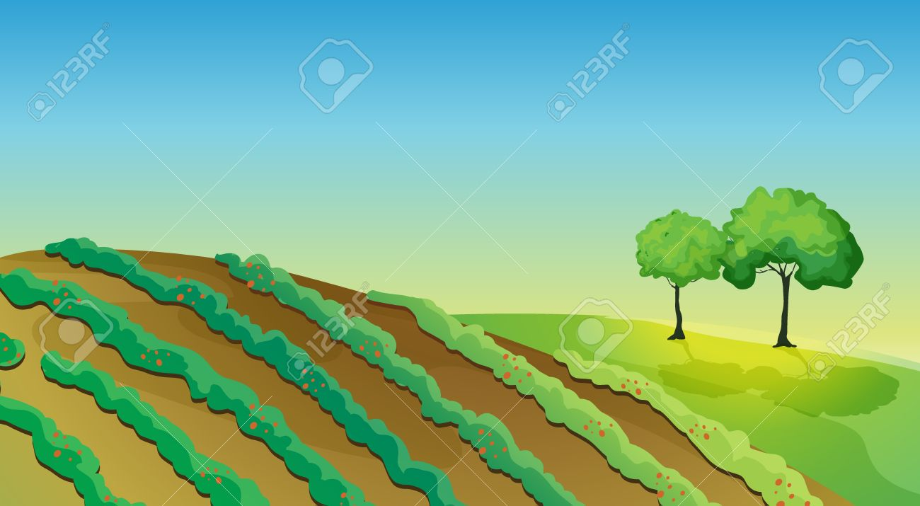 Plantation clipart #1, Download drawings