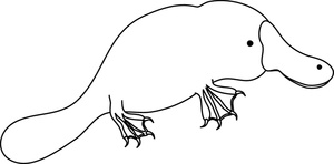 Platypus clipart #10, Download drawings