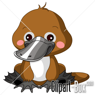 Platypus clipart #1, Download drawings