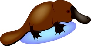 Platypus clipart #7, Download drawings