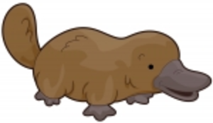Platypus svg #9, Download drawings