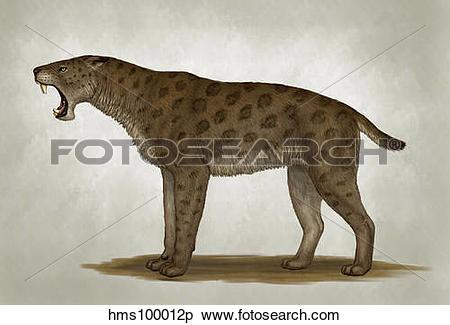 Pliocene clipart #11, Download drawings