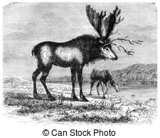 Pliocene clipart #18, Download drawings