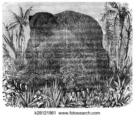 Pliocene clipart #12, Download drawings