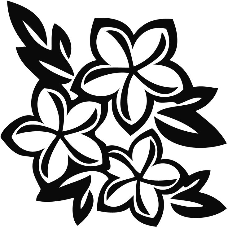 Plumeria clipart #6, Download drawings