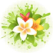 Plumeria clipart #9, Download drawings
