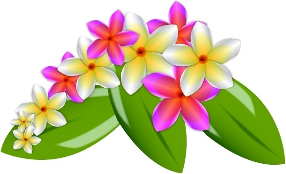 Plumeria svg #243, Download drawings