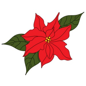 Poinsettia clipart #19, Download drawings