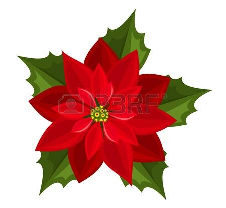 Poinsettia clipart #16, Download drawings