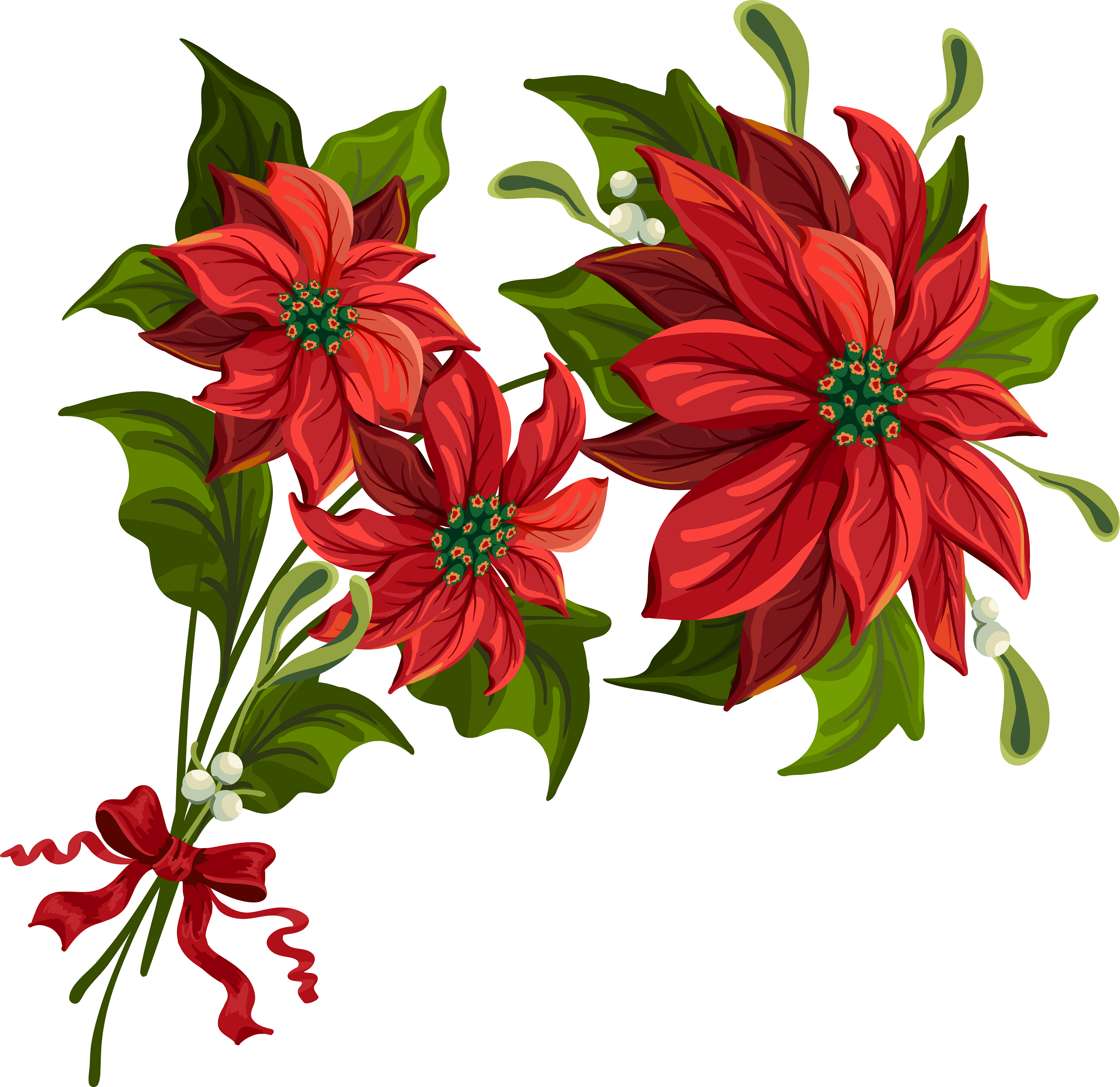Poinsettia clipart #4, Download drawings