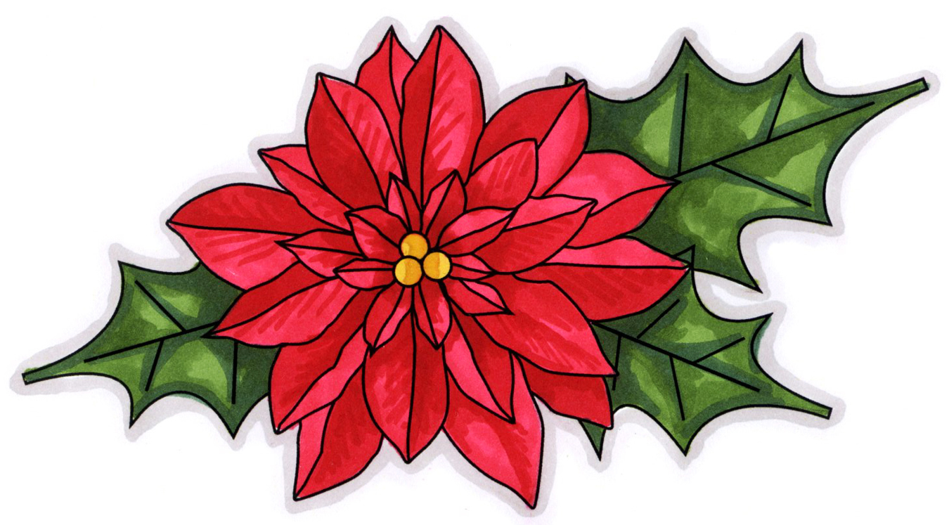 Poinsettia clipart #7, Download drawings