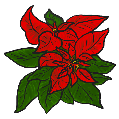 Poinsettia clipart #6, Download drawings