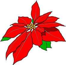 Poinsettia clipart #20, Download drawings
