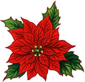 Poinsettia clipart #15, Download drawings
