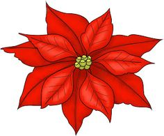 Poinsettia clipart #14, Download drawings