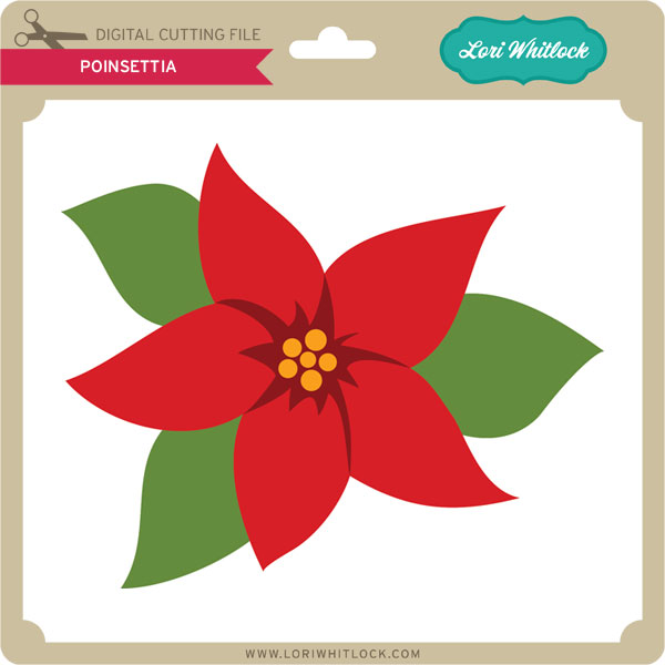 Poinsettia svg #11, Download drawings