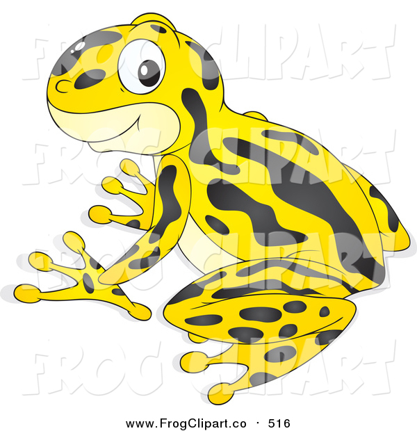 Poison Dart Frog clipart #3, Download drawings