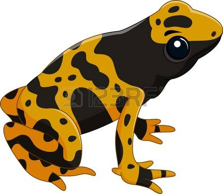 Poison Dart Frog clipart #8, Download drawings