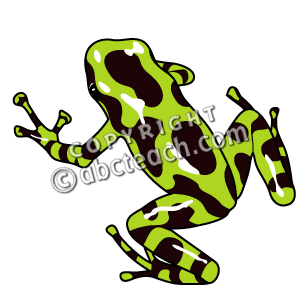 Poison Dart Frog clipart #11, Download drawings