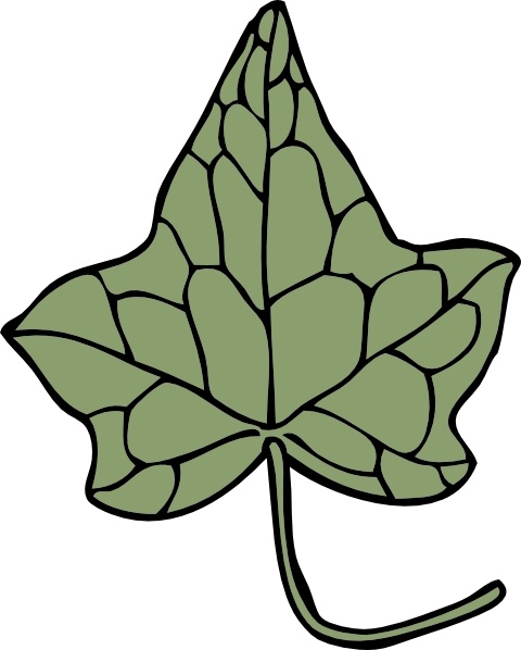 Poison Ivy clipart #6, Download drawings