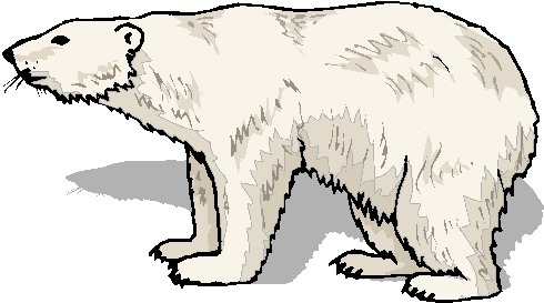 Polar  Bear clipart #16, Download drawings