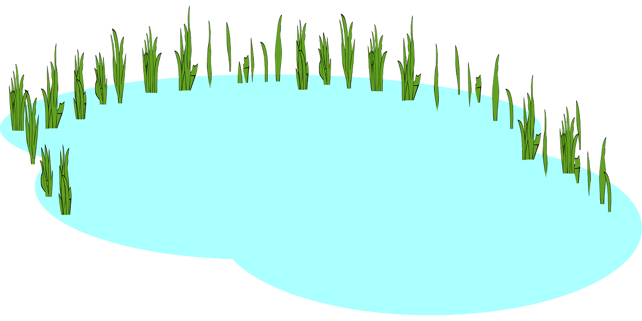 Pond clipart #18, Download drawings