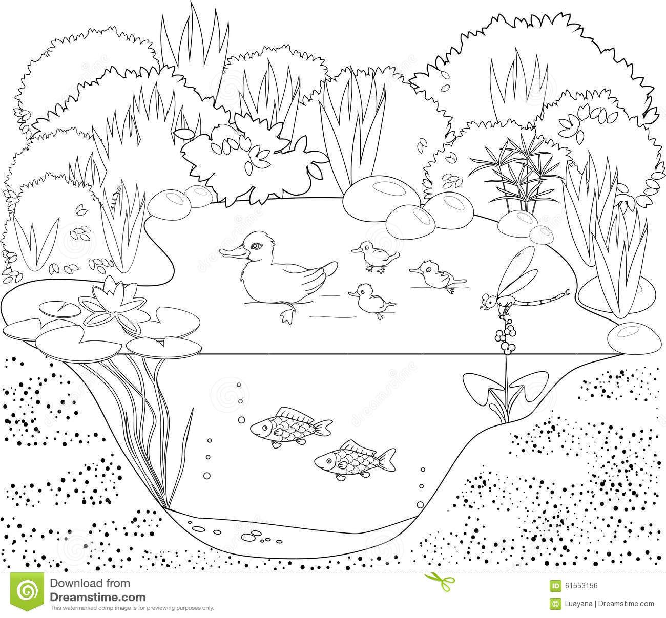 Pond coloring #14, Download drawings
