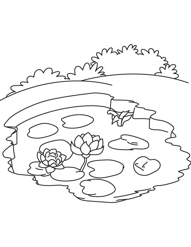 Pond coloring, Download Pond coloring for free 2019