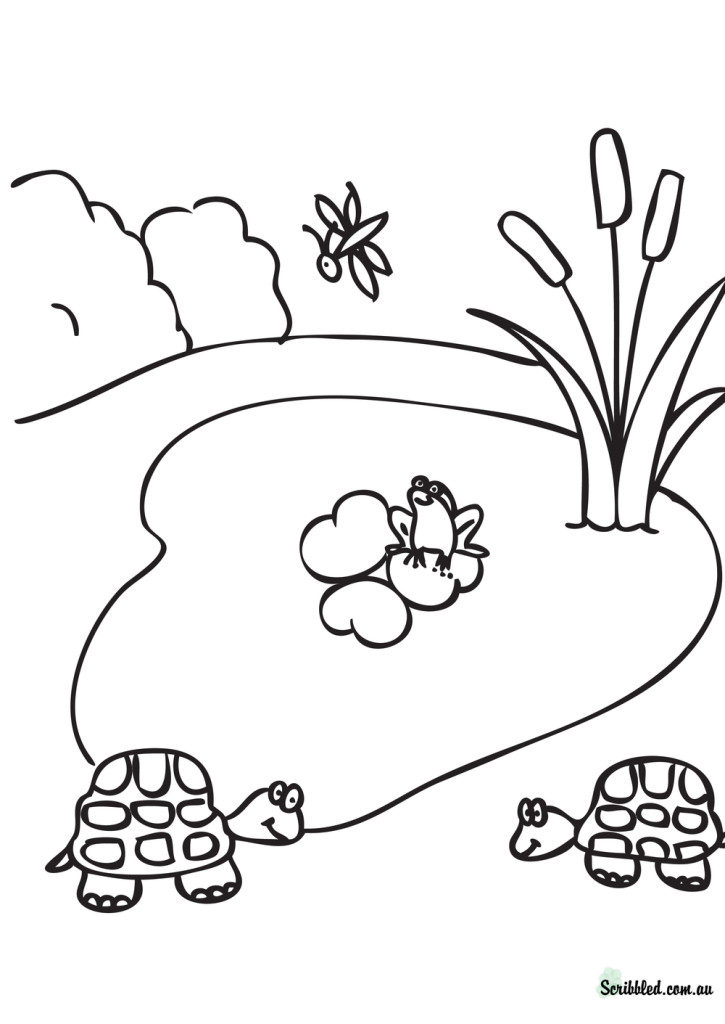 Pond coloring #13, Download drawings