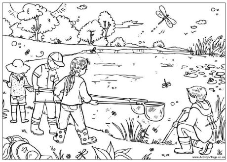 Pond coloring #7, Download drawings