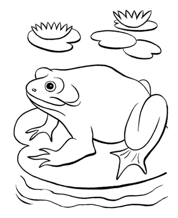 Pond coloring #9, Download drawings