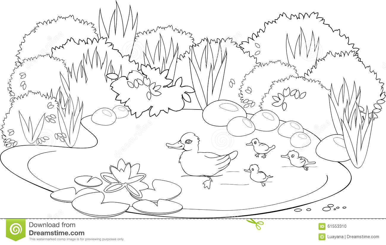 Free Download Adult Coloring Pages Duck