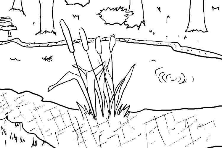 Pond coloring #16, Download drawings
