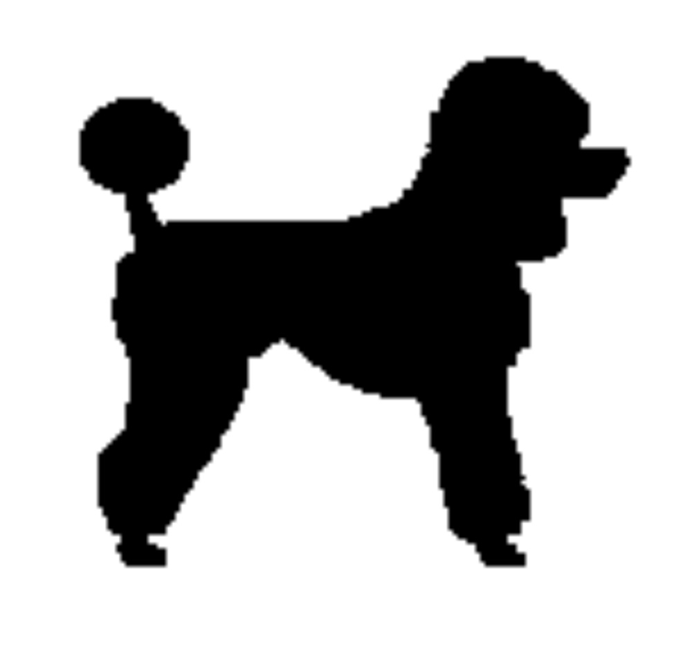 Standard Poodle clipart #18, Download drawings