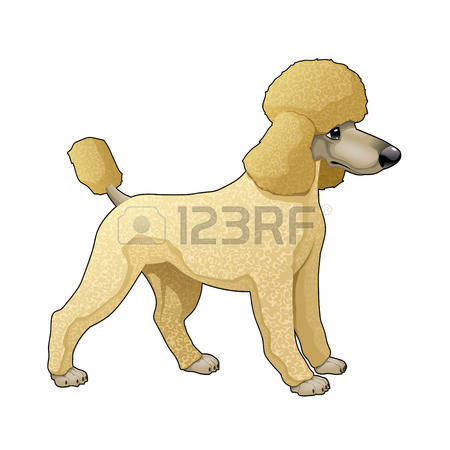 Poodle clipart #17, Download drawings