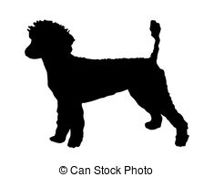 Poodle clipart #14, Download drawings