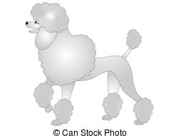 Poodle clipart #15, Download drawings