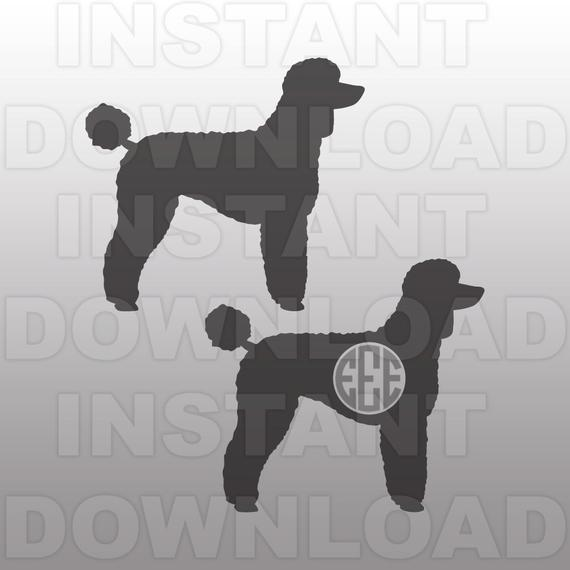 Poodle svg #400, Download drawings