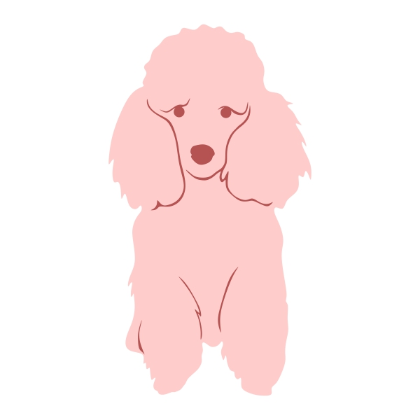 Poodle svg #394, Download drawings