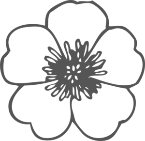 Poppy clipart #11, Download drawings