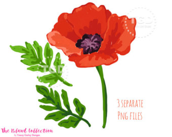 Poppy clipart #8, Download drawings