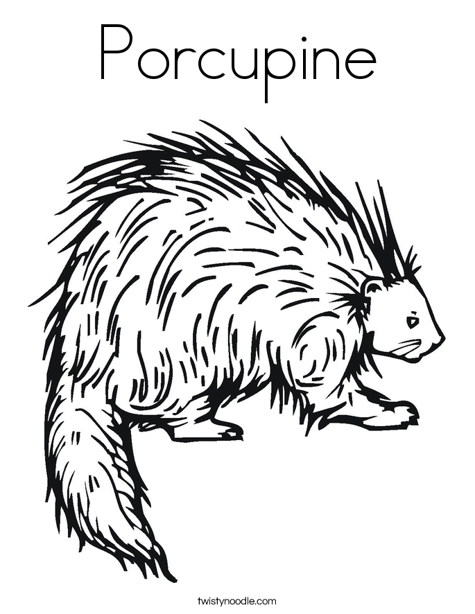Rodent coloring #10, Download drawings